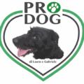 logo prodog